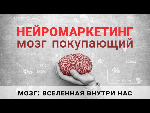 Нейромаркетинг. Мозг покупающий. Анна Шестакова