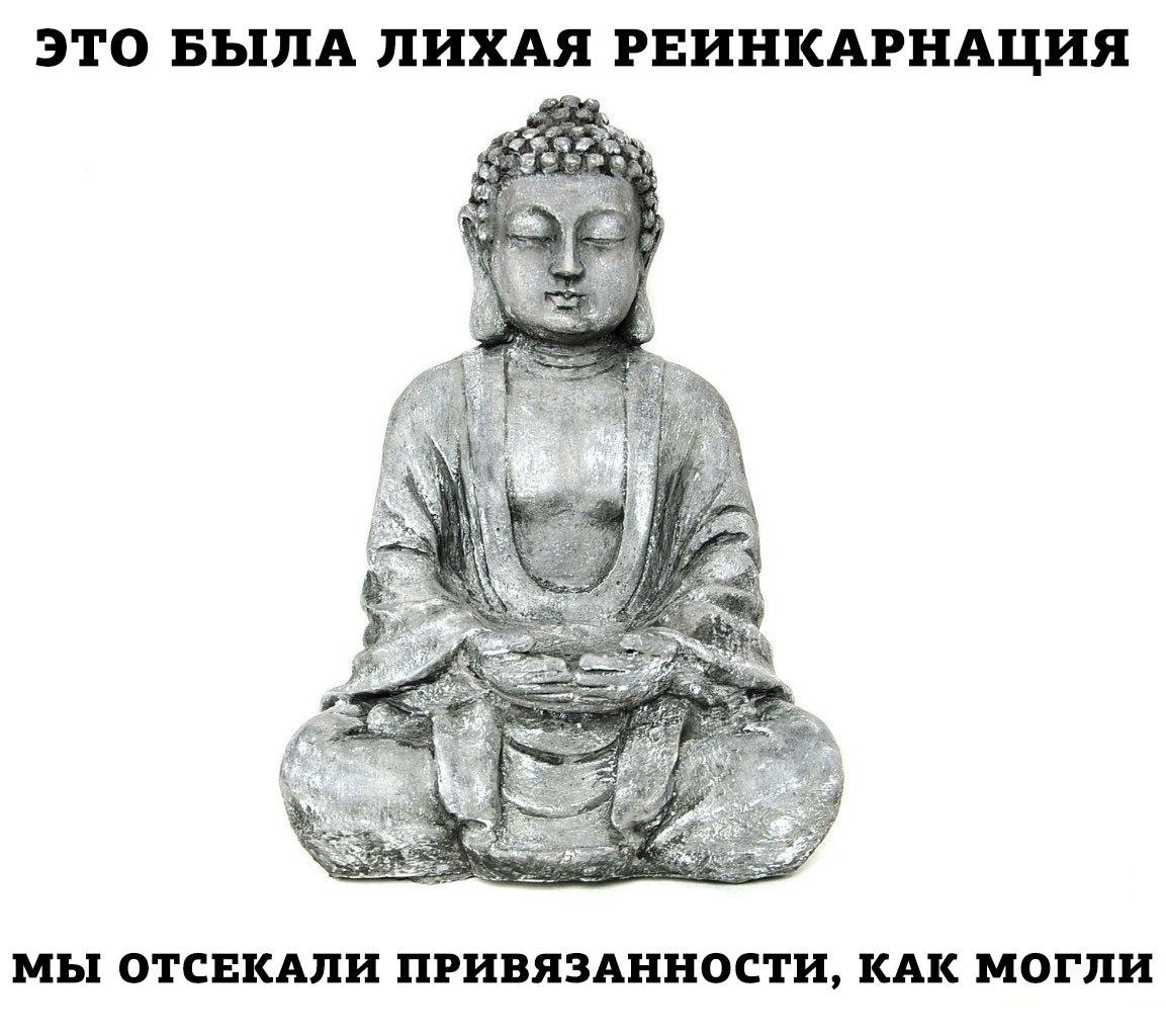 https://cs7056.vk.me/c837225/v837225215/65f8/uCyDGNM8CNo.jpg