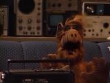 Alf Quote Season 2 Episode 1 Alf_Танцы