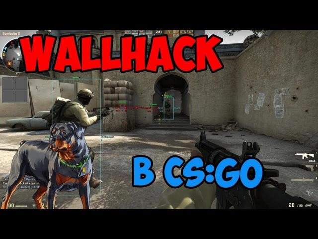 Wallhack в CS:GO и почему у меня больше нет собаки