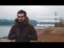 #ГОЛОВНЫЕМЮСЛИ: Панин, Сычева, Живодерки