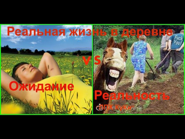 Реальная жизнь в деревне/Самая грязная работа в деревне/Легко ли зарабатывать в деревне