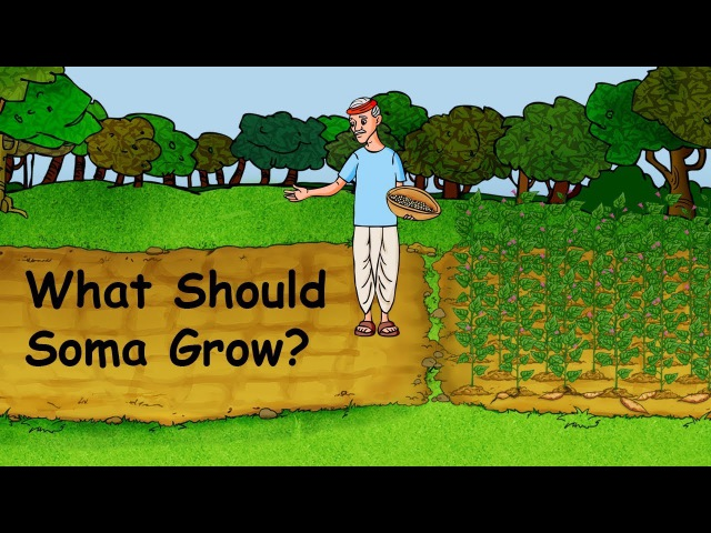 Аудирование для начинающих - What Should Soma Grow?: Learn English (US) with subtitles