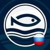 Grauvell Россия (лучшие товары для рыбалки)