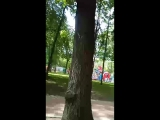 Сергей Попов - Live