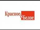Создание рекламного ролика для сети КрасноеБелое от компании ФОРТИТ Сайт FORTITFO