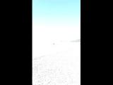 Абхазия пляж и Его любовь😎
