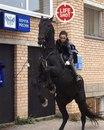 Почтальон Мария Рубцова, которая развозит посылки в Подмосковье на коне…