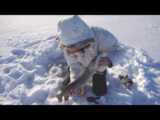 Ловля щуки на жерлицы в глухозимье / Fishing in Finland. Catching pike on live bait in winter.