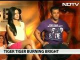 Salman khan Katrina kaif talk about Ek Tha Tiger ndtv -night out