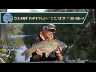 Карпфишинг: ловля карпа осенью в корягах с Олегом Певневым