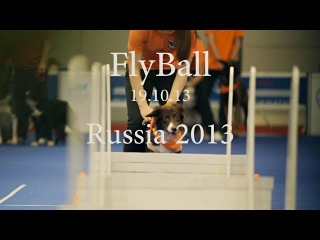Flyball Russia 2013 | Флайбол Россия 2013