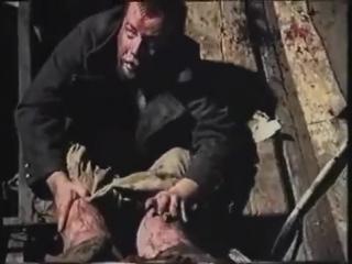 С добрым утром (VHS Video)