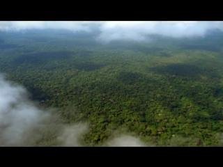 BBC Как вырастить планету - How to Grow a Planet (2012) 3.Триумф неудачника