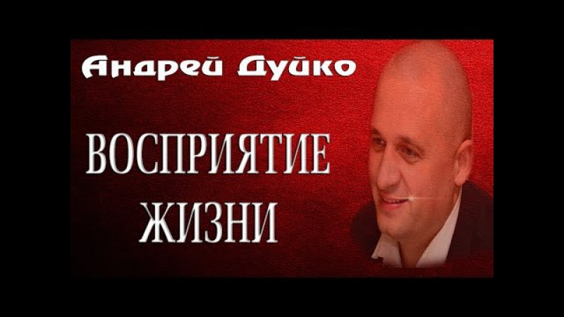 ВОСПРИЯТИЕ ЖИЗНИ. Андрей Дуйко