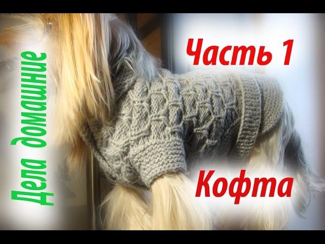 Кофта для собаки своими руками Часть 1 Уроки вязания на канале Дела домашние
