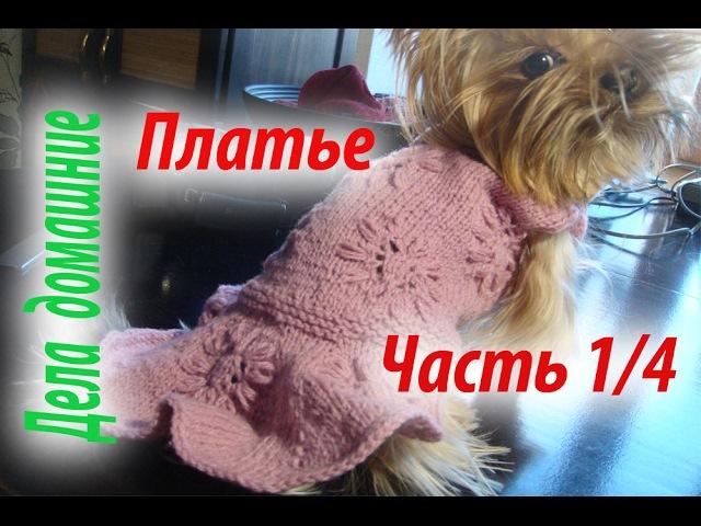Платье для собаки Как связать платье для собаки своими руками Часть1