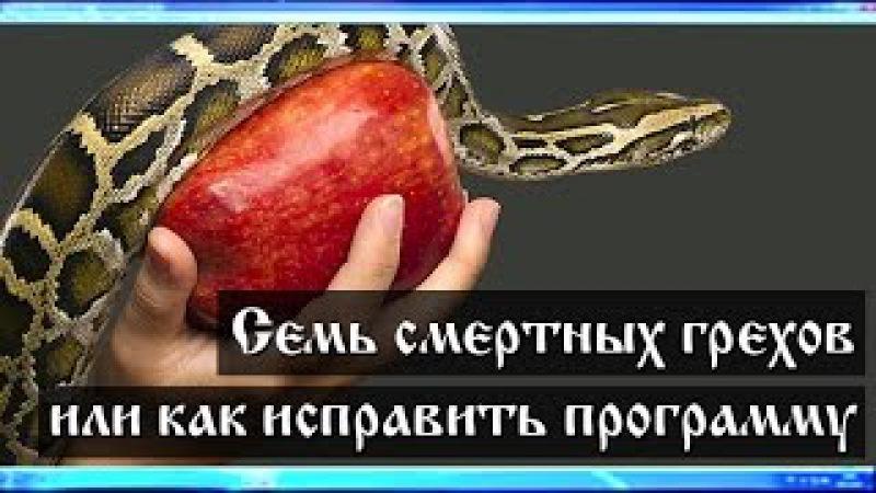 Семь смертных грехов или как исправить программу человека? (Лекция 0.5, Семенов И.Н.)