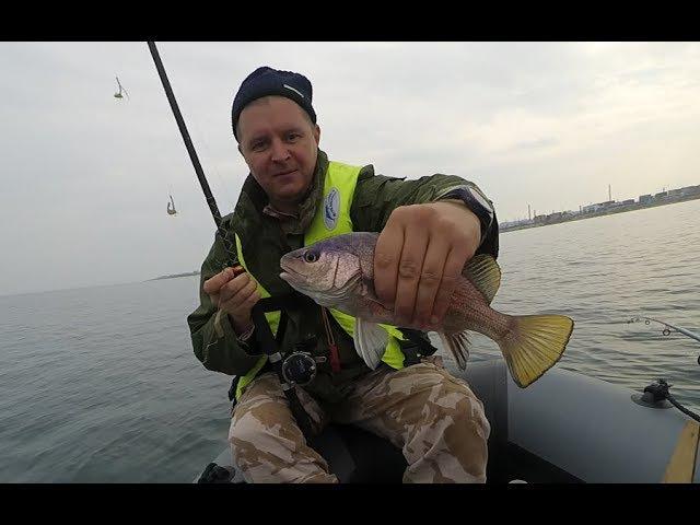 Рыбалка на Чёрном море / Крупный Горбыль / Fishing in the Black sea / Large Croaker