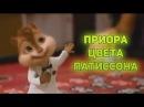Элвин и Бурундуки поют песню Приора Цвета Патиссона Comedoz