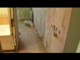 Ремонт двухкомнатной ул.Чернышевского 101 (демонтаж и начало работ)