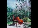 Edward Elgar - Cello Concerto in E minor, Op. 85, Mov. III