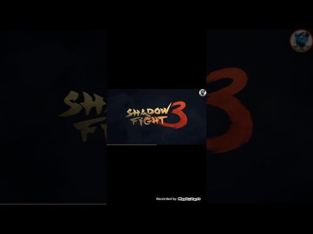 Первый взгляд на бой с тенью 3