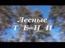 Фильм Лесные Тени