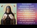 Моли́тва Святителю Митрофану Воронежскому чудотворцу о благосостоянии детей