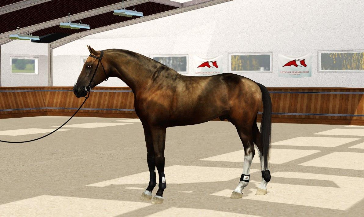 Регистрация лошадей в RHF 2 - Страница 4 AoFdmsfvUtY
