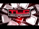 WFW TLC: AJ Styles vs Jeff Hardy [Ladders match for USA Championship]