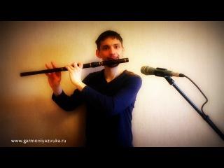 Гармония звука - Ирландская поперечная флейта в ре из палисандра