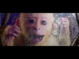 A lenda do Rei Macaco 1  - Dublado HD