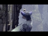 The Last Guardian: Final PS4 Gameplay Walkthrough