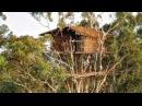 La tribu que vive en los árboles Los Korowai