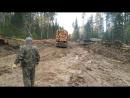 Вывозка леса в Орджоникидзе, конец сентября 2017 год