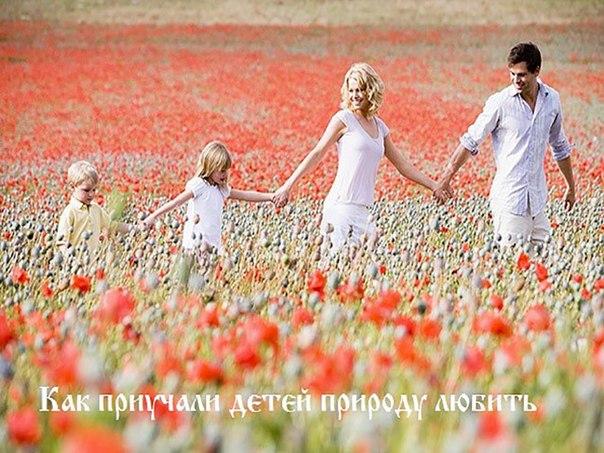 Любить природу - одна из главных заповедей Руси нашей
