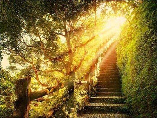 Вера Богу, как путь эволюции души