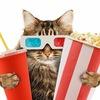 RANET.TV - Кино, сериалы и ТВ-шоу онлайн
