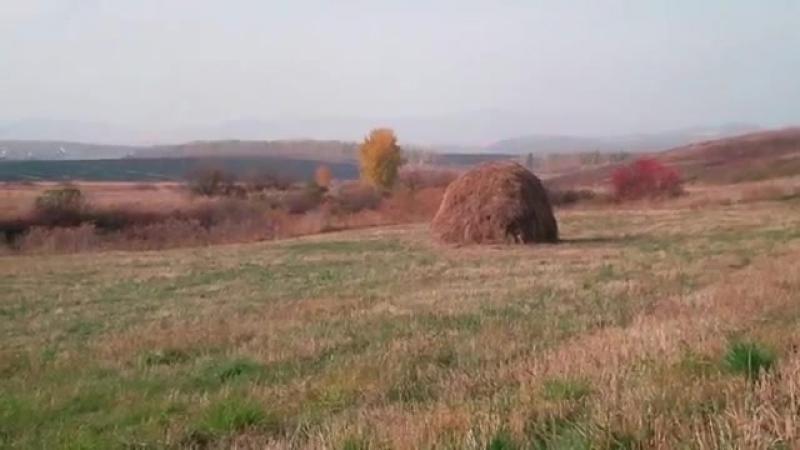 Поль Мориа муз из к⁄ф Профессионал (осень 2014 у деревни Зимовьё)