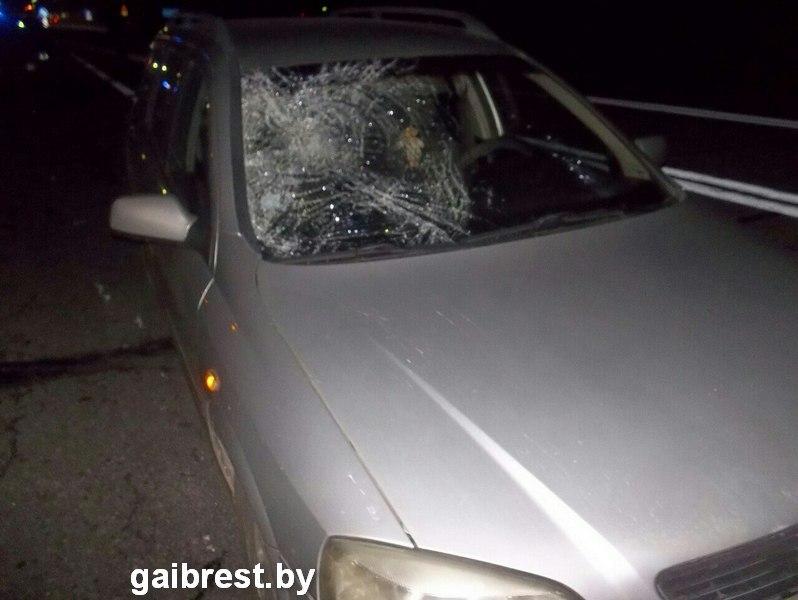 """Добегался: на трассе М1 пешеход-нарушитель попал под колеса """"Опель Астра"""""""