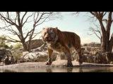 The Jungle Book  all clips &amp trailers SUPERCUT (2016) Disney