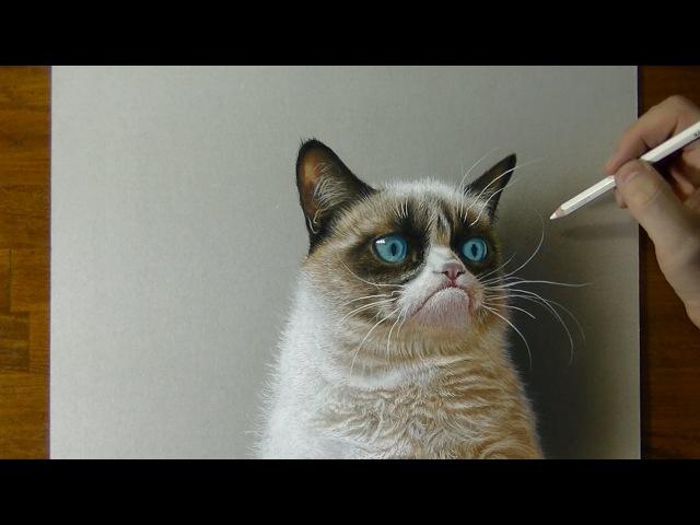 3D Drawing - Grumpy Cat Meme Portrait