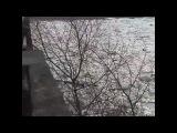 Хуст! Речка Тиса! Лед тронулся!