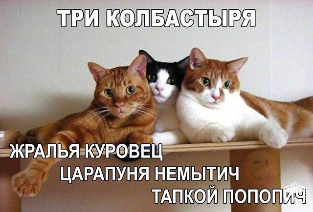https://pp.userapi.com/c837231/v837231246/46f0a/QpgVMJN25kE.jpg