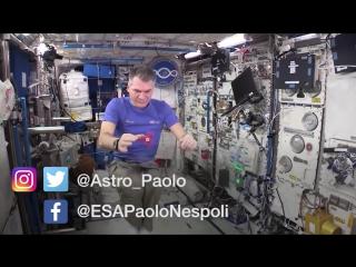 Астронавты НАСА продемонстрировали трюки со спинером в космосе