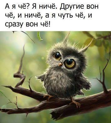https://pp.userapi.com/c837231/v837231483/4d770/P8wN-ASwqUU.jpg