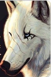 Рисунок профиля (Дмитрий Жиляев)