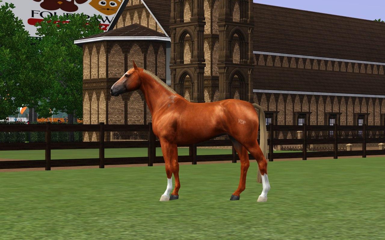 Регистрация лошадей в RHF 2 - Страница 7 0XuAwBZgUQE