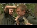 Дикая жизнь с Тимом Фолкнером The Wild Life of Tim Faulkner 2013 06